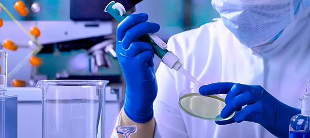 noticias investigación con células madre