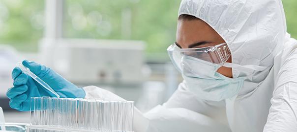 investigación con células madre